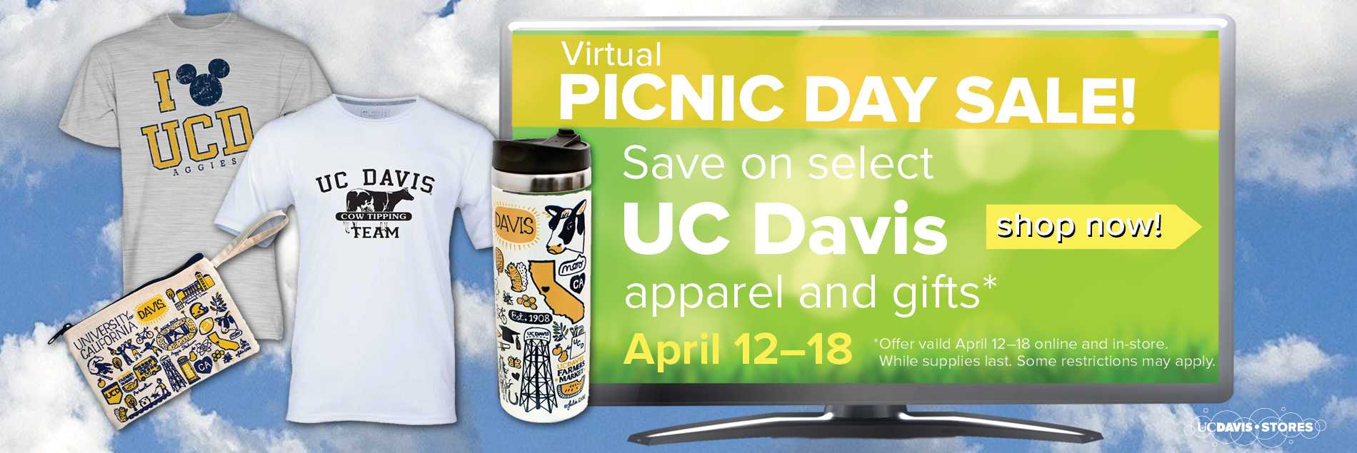 Picnic Day Sale Banner