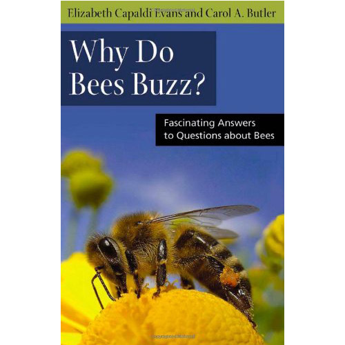 Why Do Bees Buzz: Fascinating Answers to Questions about Bee