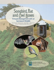 Songbird, Bat and Owl Boxes