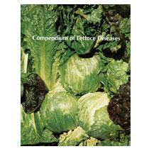 Compendium of Lettuce Diseases