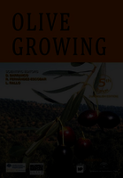 Image For Olive Growing