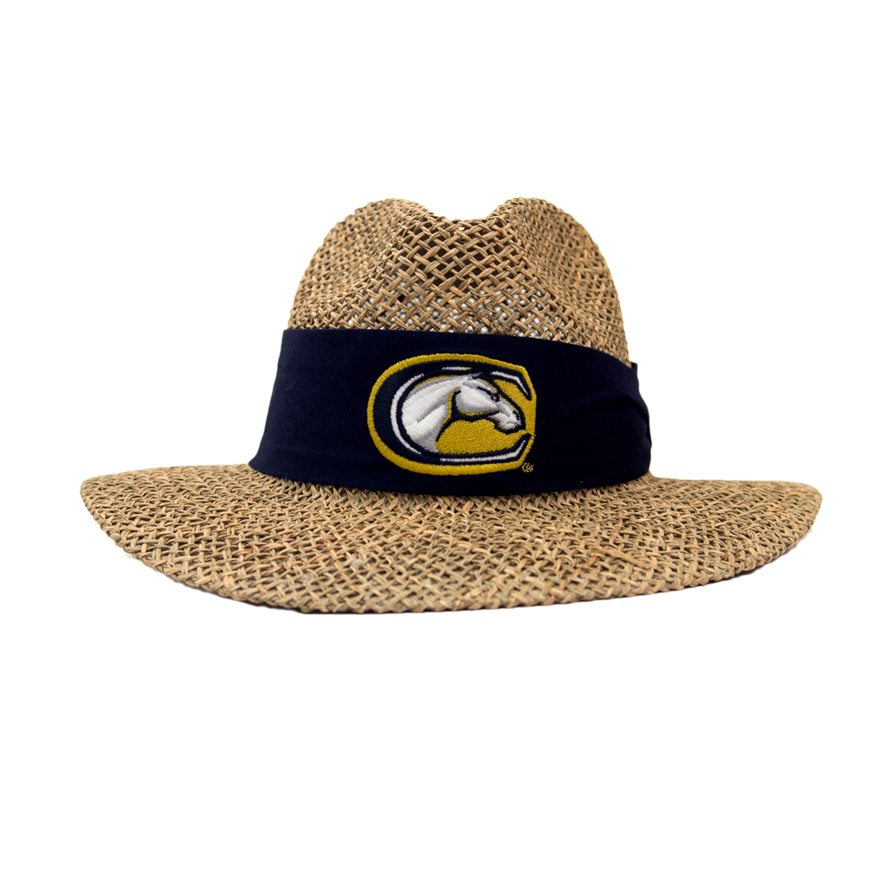 Cover Image For UC Davis Straw Hat C-Horse Mascot