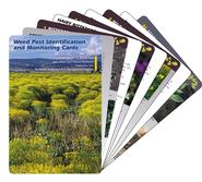 Image For Weed Pest Identification and Monitoring Cards