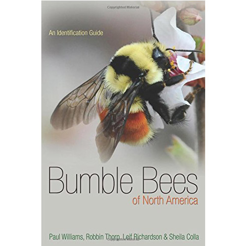 Cover Image For Bumble Bees of North America: An Identification Guide