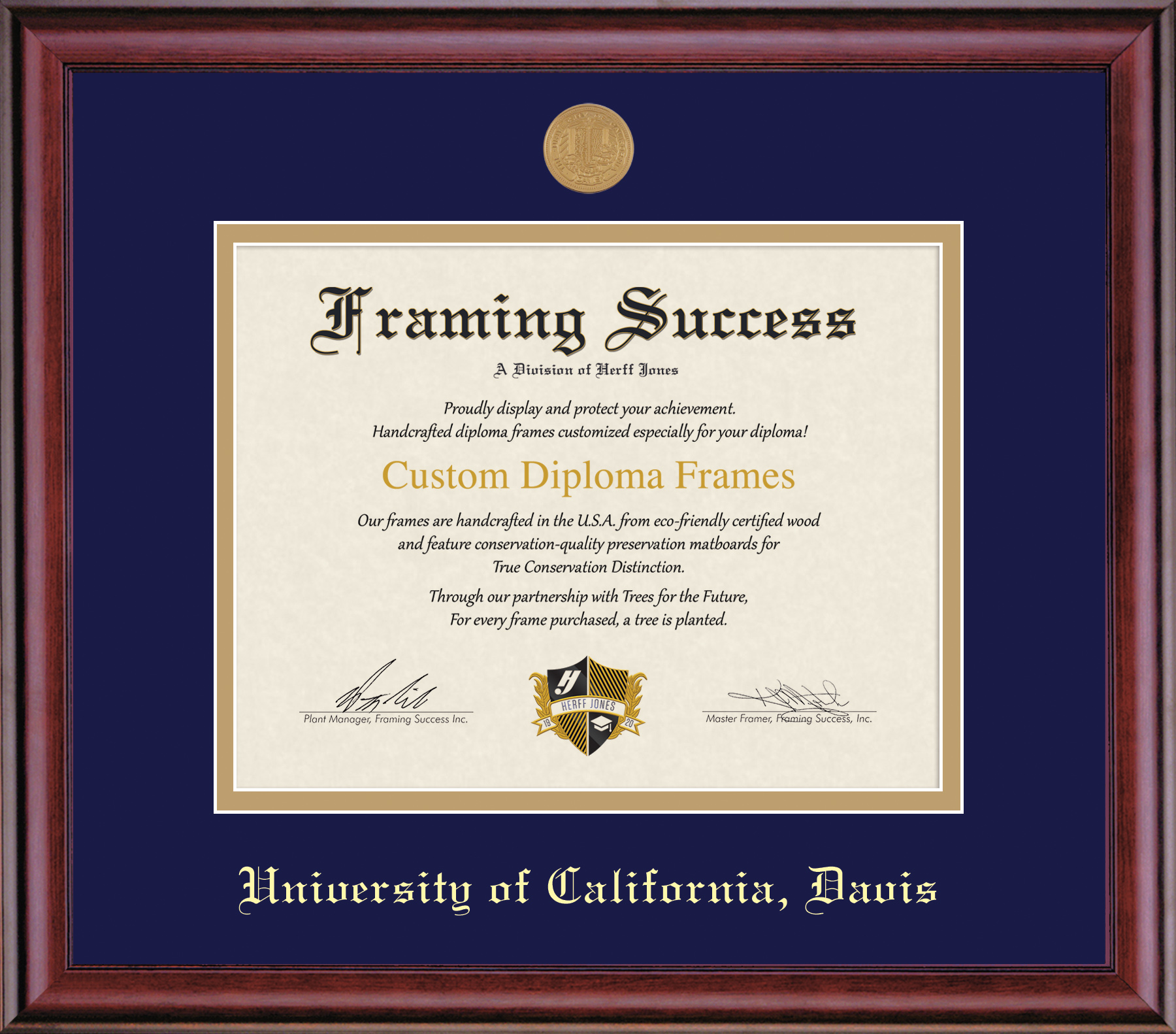 Image For Framing Success Diploma Frame Classic Finish