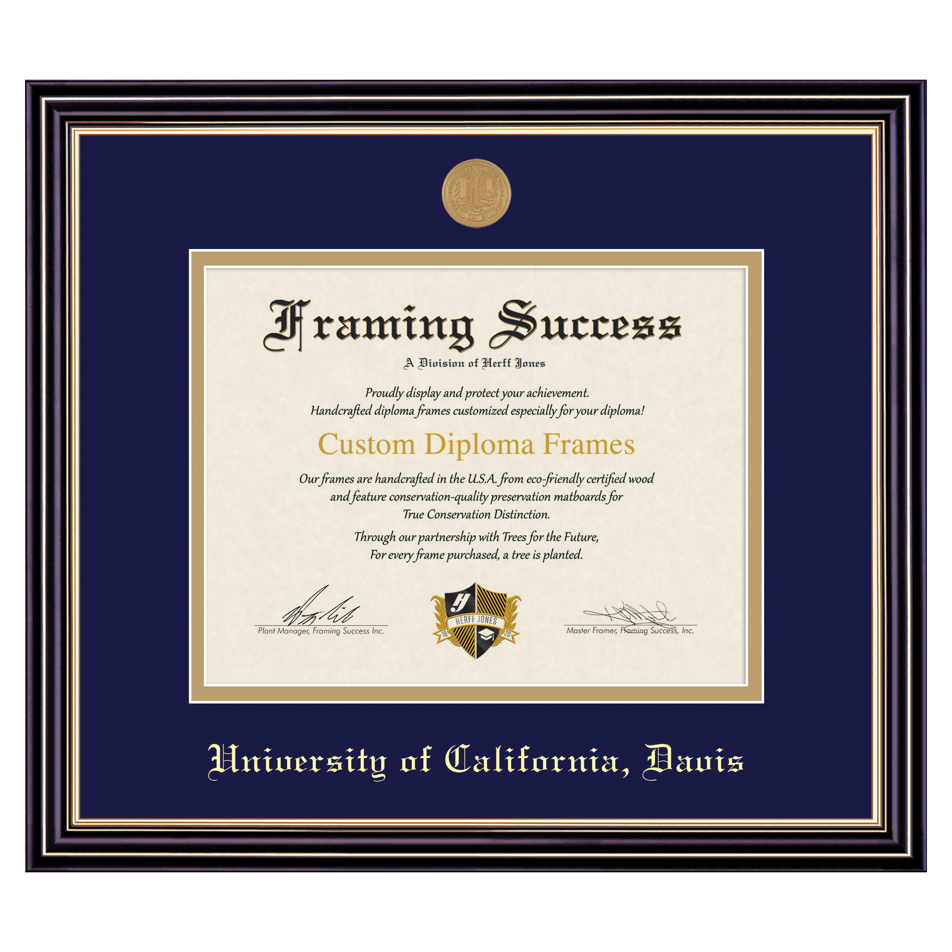 Image For Framing Success Diploma Frame Prestige Finish