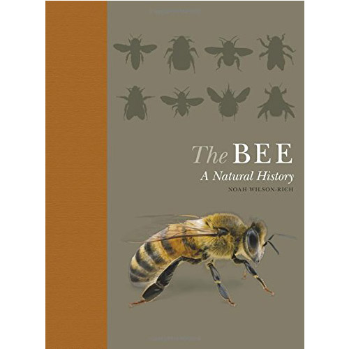 Cover Image For The Bee: A Natural History
