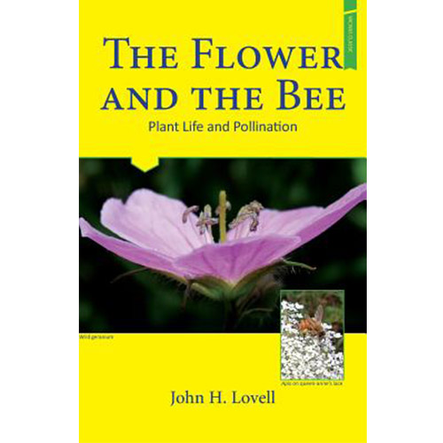 Image For The Flower and the Bee
