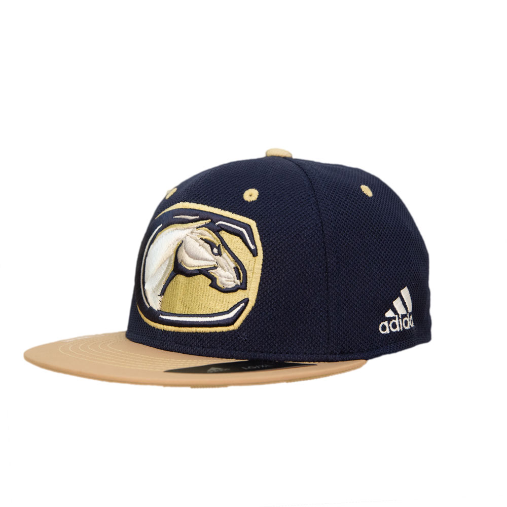 Cover Image For Adidas Fitted UCD Mascot Hat w/Climalite