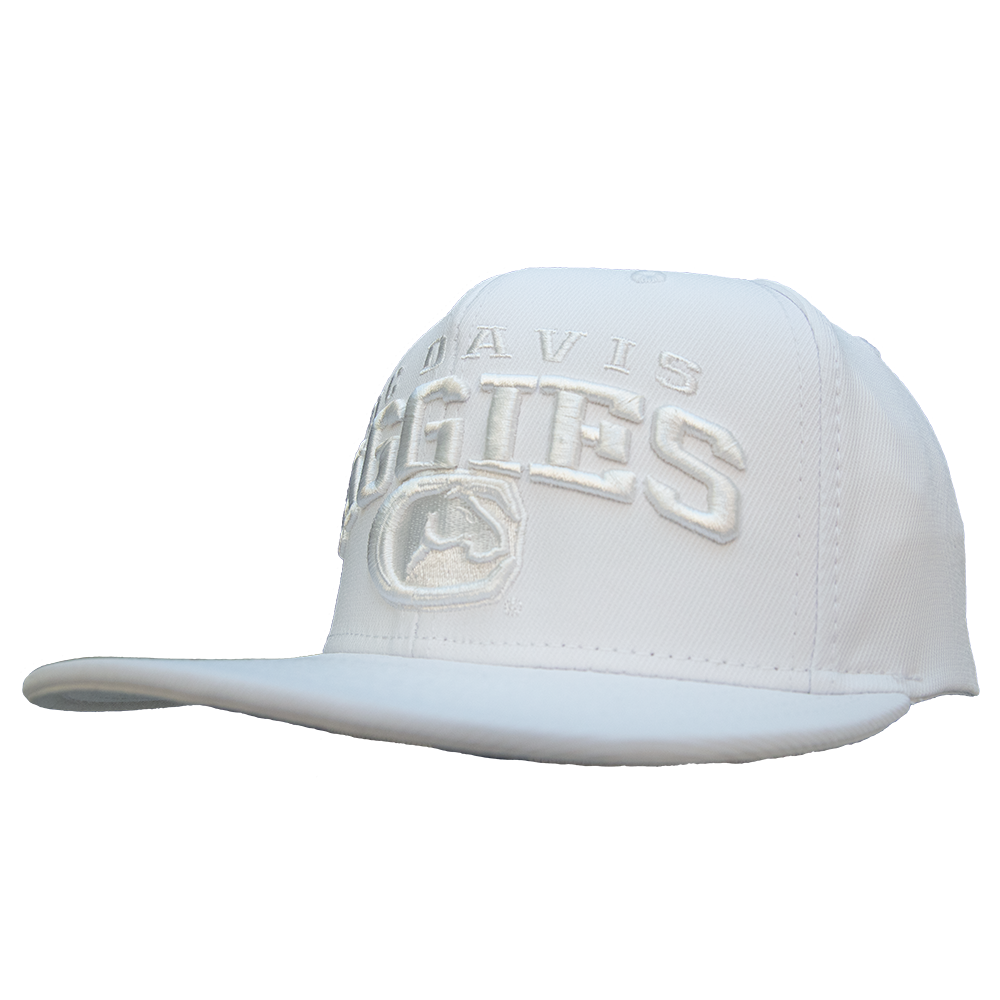 b2b0a8ded81 Adidas UCDavis Aggies Hat in all White