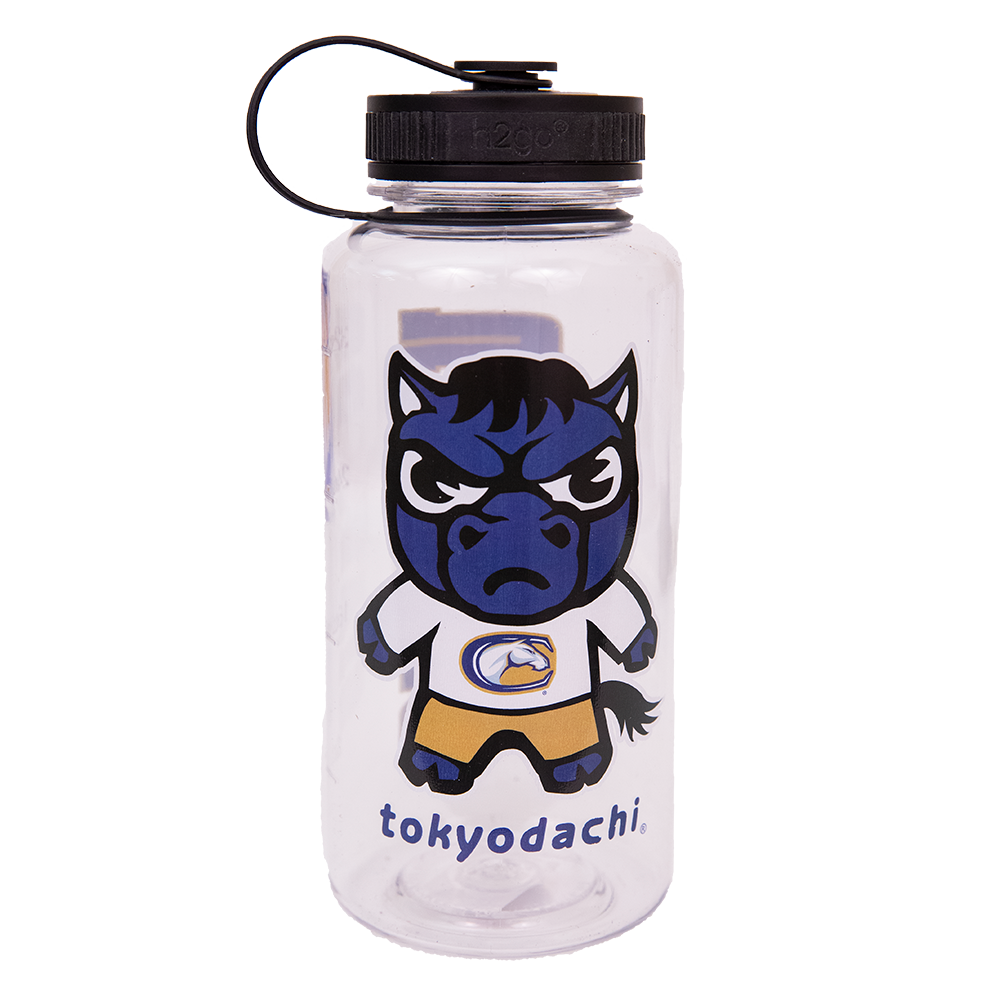 Image For Water Bottle Tokyodachi® UC Davis Mascot