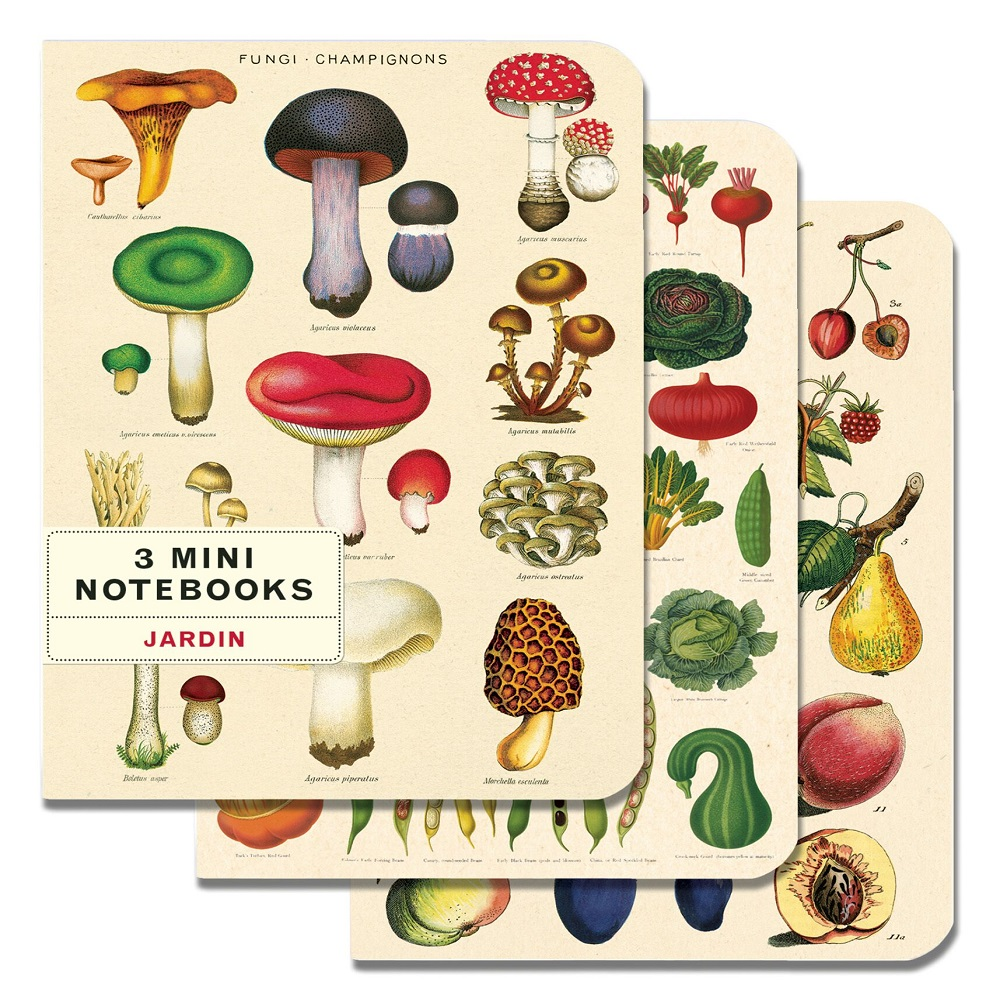Image For Cavallini & Co. Mushrooms 3 Mini Notebooks