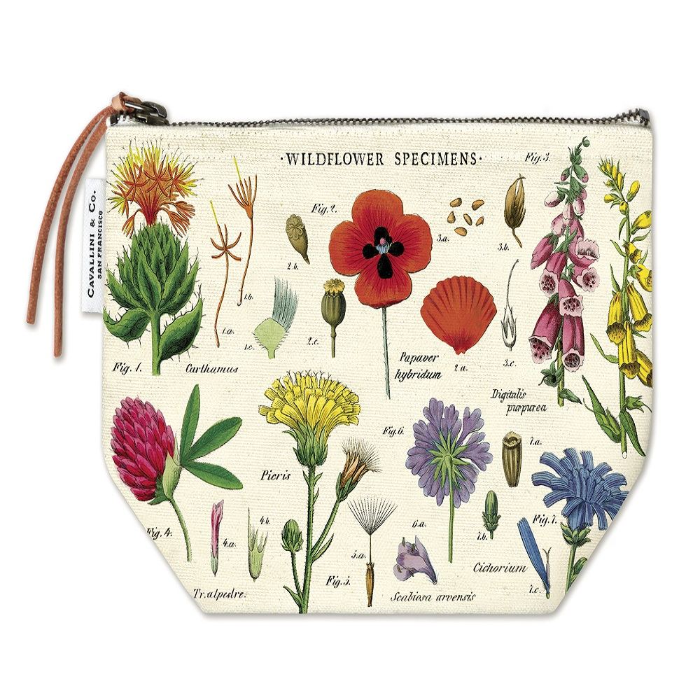 Image For Cavallini & Co. Wildflower Specimens Canvas Pouch