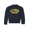 Cover Image for Blue 84 UC Davis Vintage Mickey Leaning Youth T-Shirt Navy