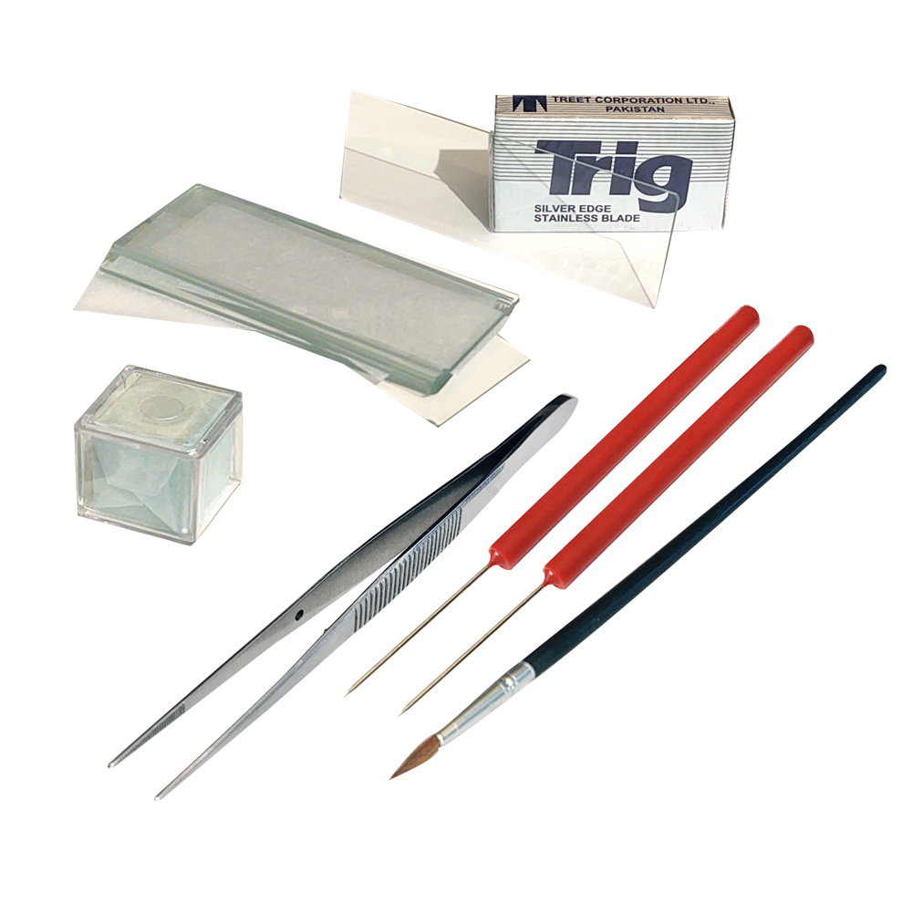 Image For PLB 105 Plant Biology Dissection Kit