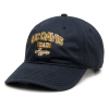 Cover Image for Champion® UC Davis Jacket Pack N Go Dad