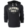 Cover Image for Campus Crew® UC Davis Water Tower Hood Originally $77.99