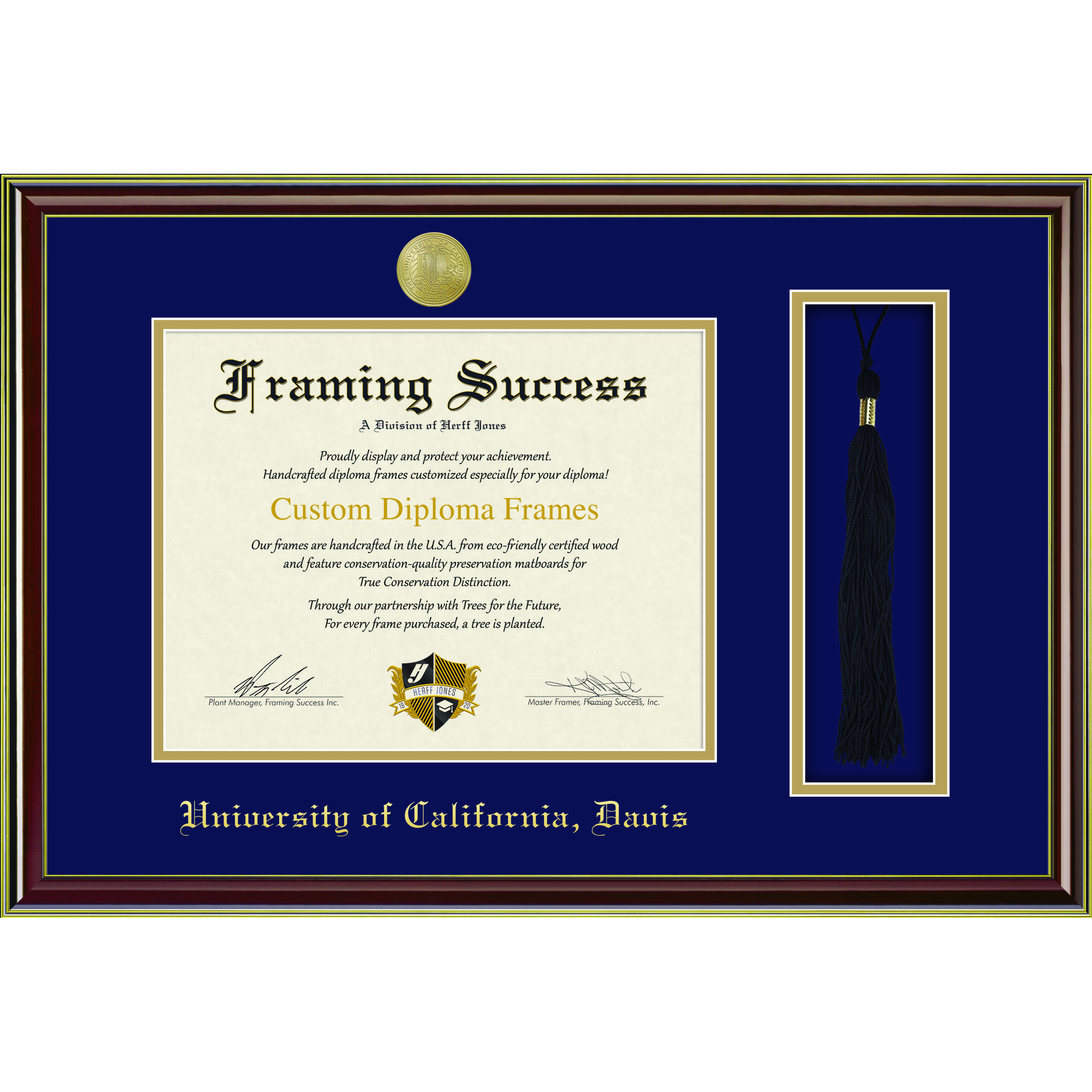Image For Framing Success Diploma and Tassel Frame