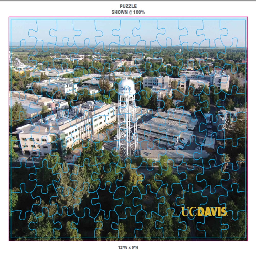 Image For UC Davis 100 Piece Puzzle 12x9