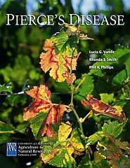 Image For Pierce's Disease