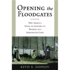 Image For Opening the Floodgates